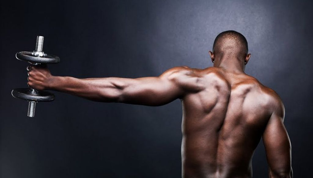 muscles1-2e743e24